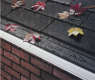 Advanced Gutter Protection With Our Gutter Shingle Gutter